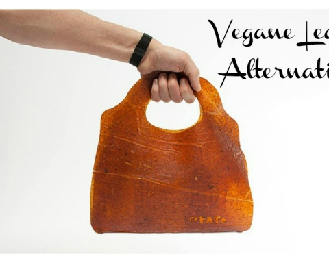 Fruit Leather veganes leder