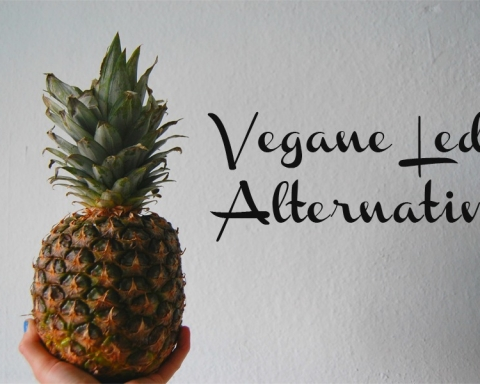 Vegane Leder Alternativen
